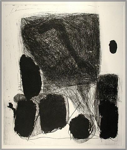 69 x 59 cm año 2001 3 6 resumen curricular fotografía de aníbal
